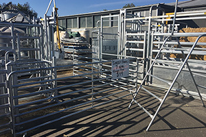 Sheep Yard Equipment